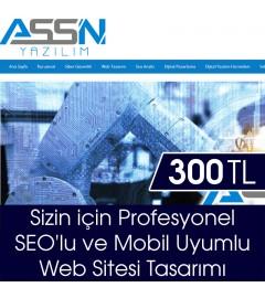 www.assnyazilim.com