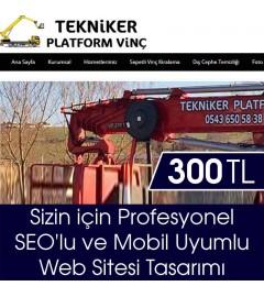 www.teknikersepetlivinc.com